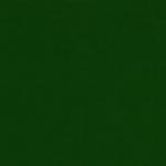 2404 Egles zaļa