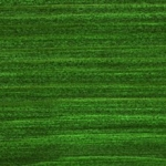 729 Egles zaļa