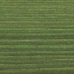 9242 Egles zaļa